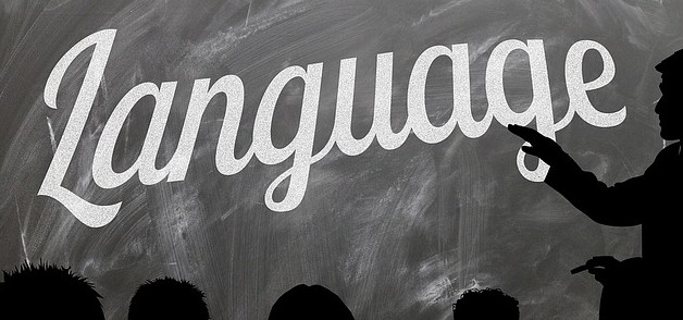 Language, why does it matter?